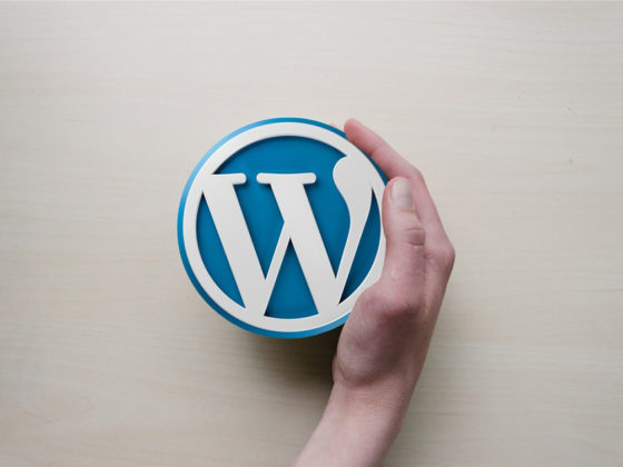 Wordpress Professional Web Design in Ontario